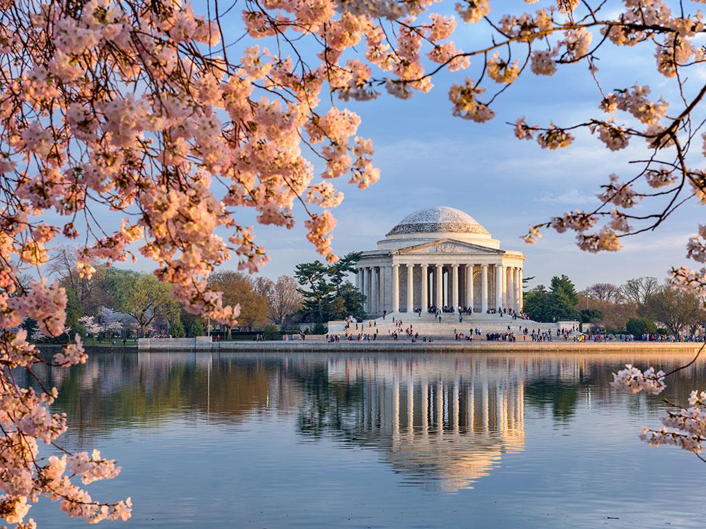 Washington DC Performance Tour